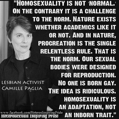 A perspective that might encourage millions of gay INDIVIDUALS to turn about and walk off the robotic Leftwing plantation.
