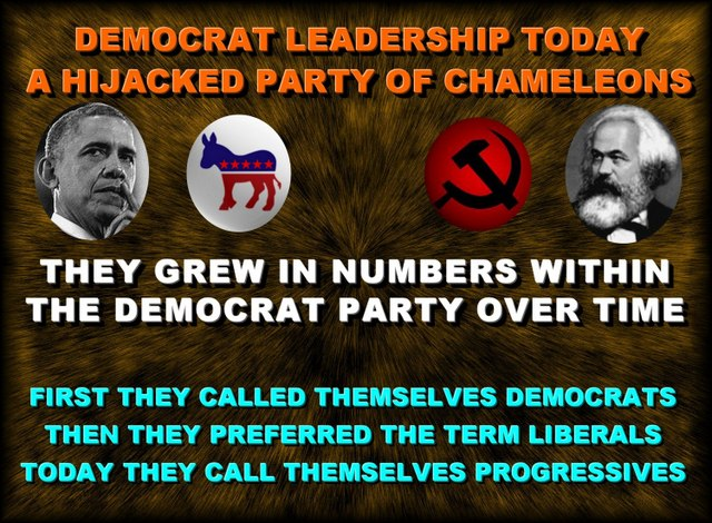Obama's Transformed Democratic Party/Cult