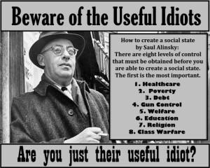 useful-idiot