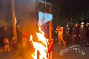 Hmm. Guillotine and burning American flag. Whatever can they mean by that?