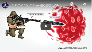 zeleko-cover